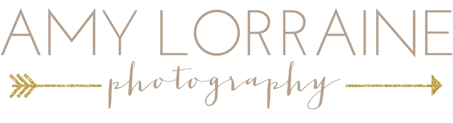 Amy Lorraine Photography | Southern Maryland Senior Portrait Photographer | Newborn | Families | Babies | Annapolis | Calvert County | Anne Arundel logo